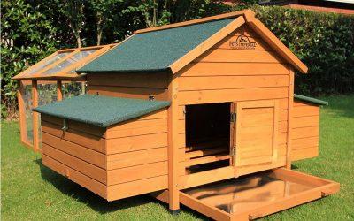 Pollaio in legno da 6 a 12 galline con doppio box e recinto