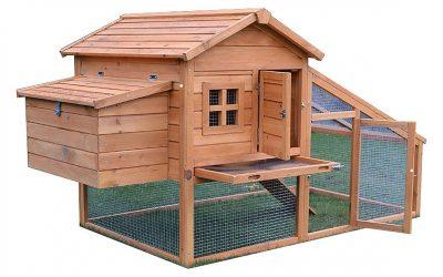 Pollaio in legno grande con corsa per 6 galline
