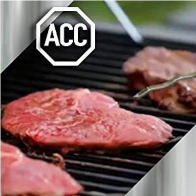 barbeque acciaio resistente calore e pioggia