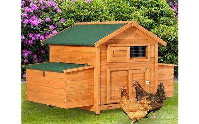 Pollaio gabbia per 4-6 galline da Giardino – casetta in legno