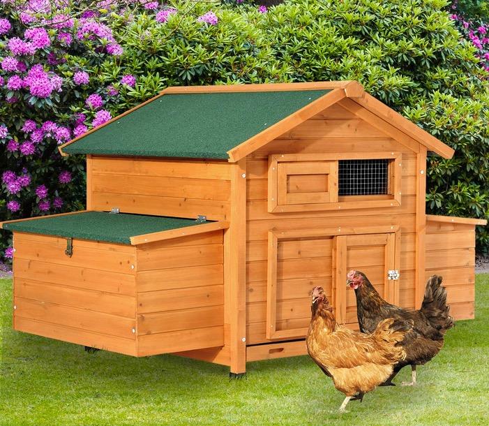 Pollaio gabbia per 4-6 galline da Giardino - casetta in legno bella