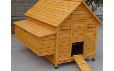 Pollaio in legno a Casetta per 10-15 galline – Grande