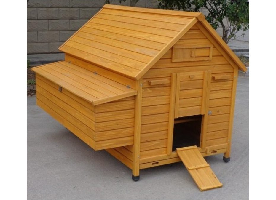 Pollaio in legno a Casetta per 10-15 galline - Grande