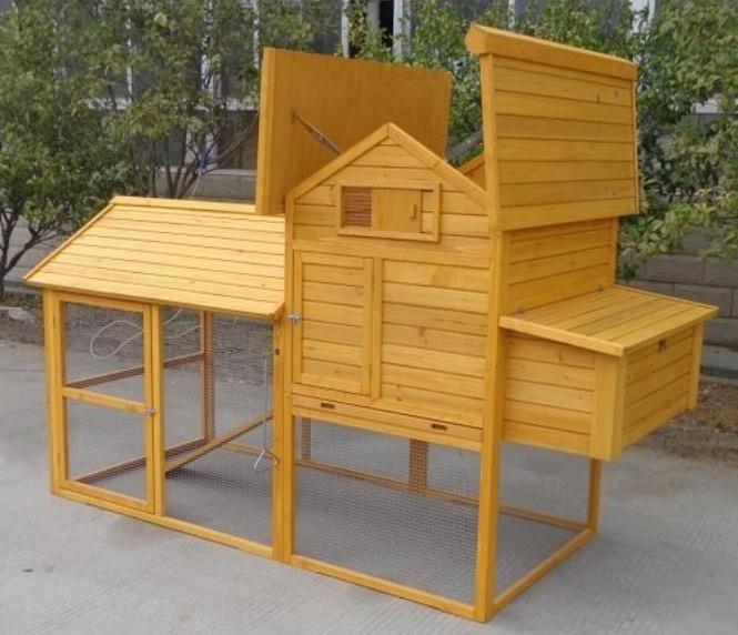 Pollaio in legno da giardino porta tetto apribile