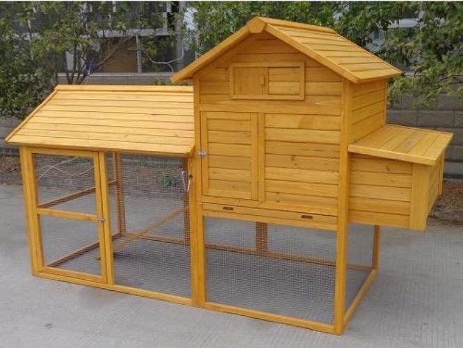 casetta pollaio deposizione uova posatoio recinto