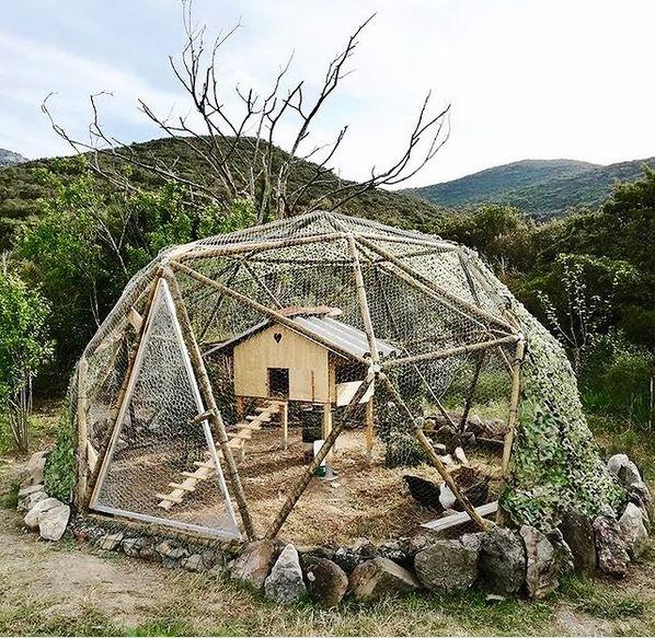 cupola geodetica pollaio conigliera cane