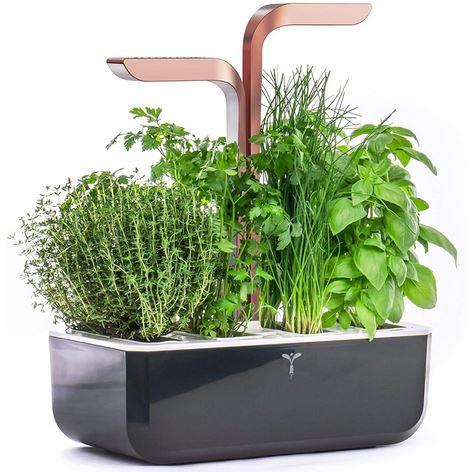 Smart Garden orto giardino autonomo