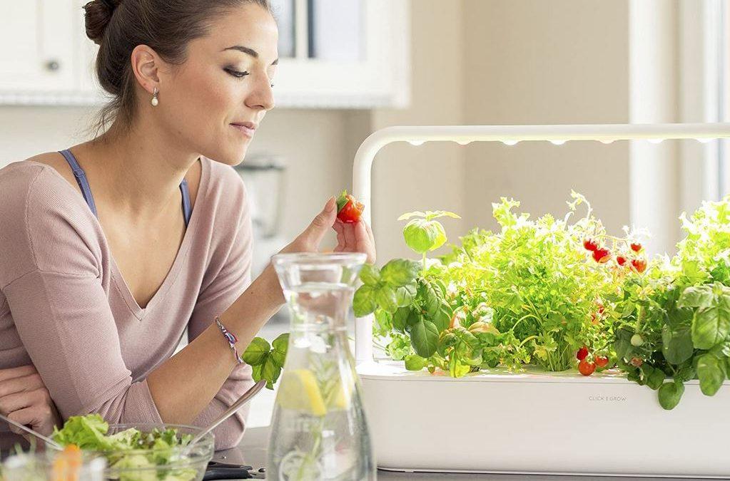 Smart Garden prezzo modelli serra intelligente orto casa