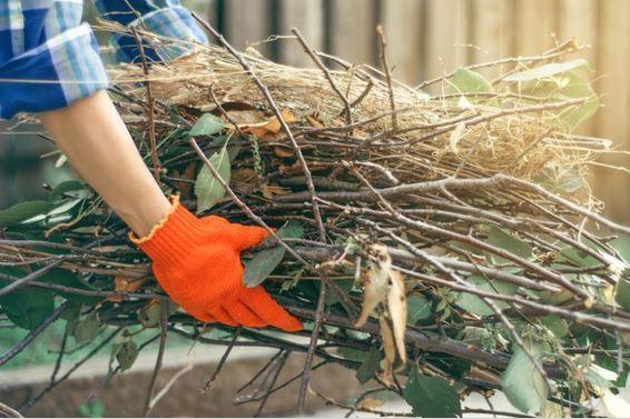triturare rami legni tronchi giardino